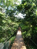 Featured Travel Photo - Enter the Ecocentre and traverse the suspension bridge...