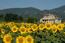 Travel community Summer in Perugia 2012