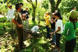 Costa Rica 2011 Spring