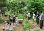 Thailand Project - Chiang Rai Community Projects