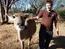 Travel community Zimbabwe Projects - Wildlife Rescue Sanctuary in Bulawayo