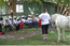 Travel community South Africa Projects - Equine Therapy for Disabled Children