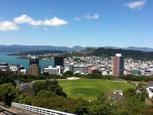 New Zealand 2013 Interns